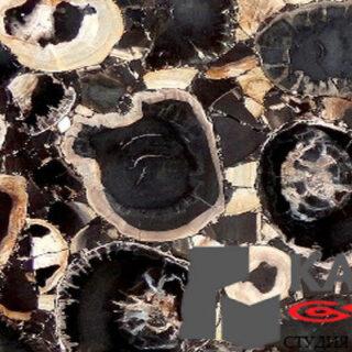 Натуральный камень Black Petrified